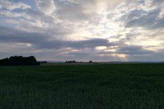 Morgenstimmung bei Frontenhausen