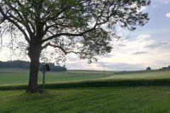 Feldkreuz bei Wachlkofen